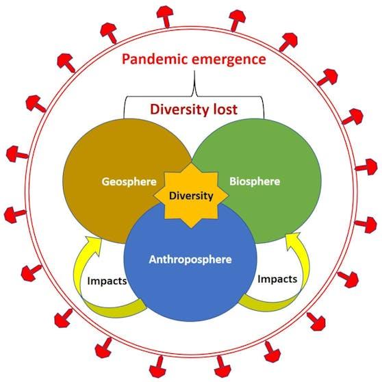 Entstehung von Pandemien durch globalen Diversitätsverlust im biologischen, anthropologischen und geologischen Bereich