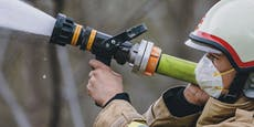 Hund in letzter Sekunde aus brennender Wohnung gerettet