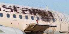 Wild gewordene Bienen attackieren Airbus in Indien