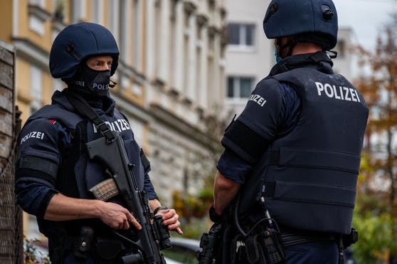 Weil der Waffenbesitzer auch der Polizei Gewalt androhte, wurde die Cobra zu Hilfe gerufen. (Symbolfoto).