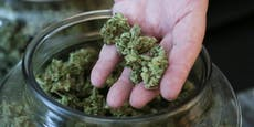Marihuana-Konsum führt zu mehr Fehlgeburten