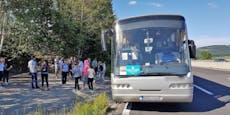 35-Jähriger lenkte Schrott-Reisebus ohne Führerschein