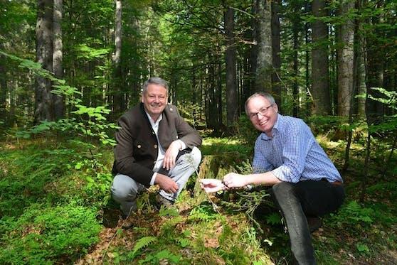 Umweltminister Andrä Ruprechten (VP) und der für den Naturschutz zuständige Landeshauptfrau-Stellvertreter Stephan Pernkopf (VP).