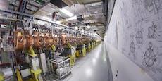 Forscher glauben an Entdeckung von fünfter Naturkraft