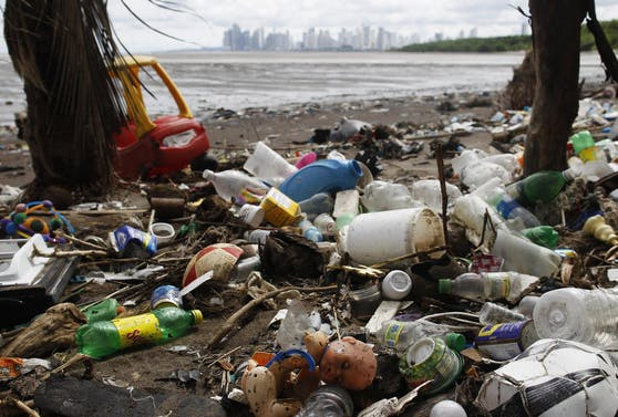 Plastik ist eine große Bedrohung für die Umwelt.