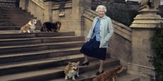 Vierbeiniger Trost: Queen lenkt sich mit Hundewelpen ab