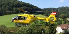 Mann (58) bei Forstarbeiten schwer verletzt