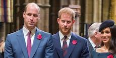 """""""Harry ist respektlos"""": William platzt jetzt der Kragen"""