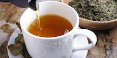 Rückruf! Dieser Tee kann für Allergiker gefährlich sein