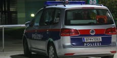 Lenker crasht Pkw bei Flucht vor Polizei