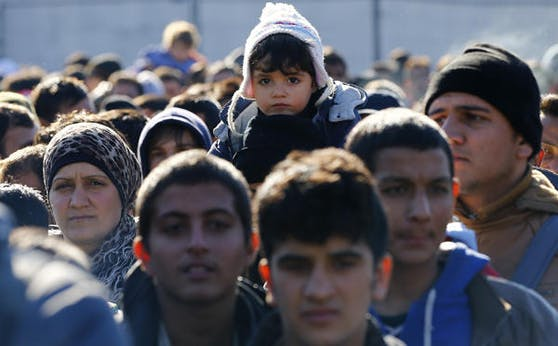 Umfrage zur Migration in Österreich