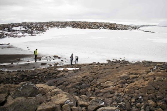 Die Gletscher des Inselstaats verloren seit dem Jahr 2000 sieben Prozent ihrer Fläche.