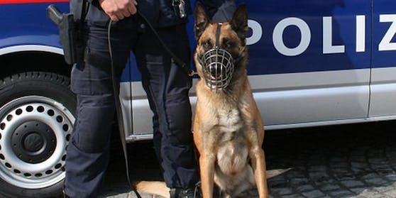 EinSpezial-Fährtenhund spürte den Verdächtigen auf.