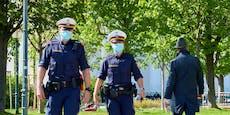 SPÖ fordert jetzt den Erlass aller Corona-Strafen