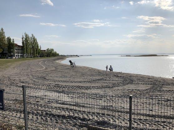 Seit 1965 stand der Wasserpegal am Neusiedler See nicht mehr so niedrig wie jetzt