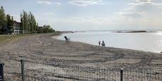 Schockierende Fotos! Neusiedler See trocknet aus