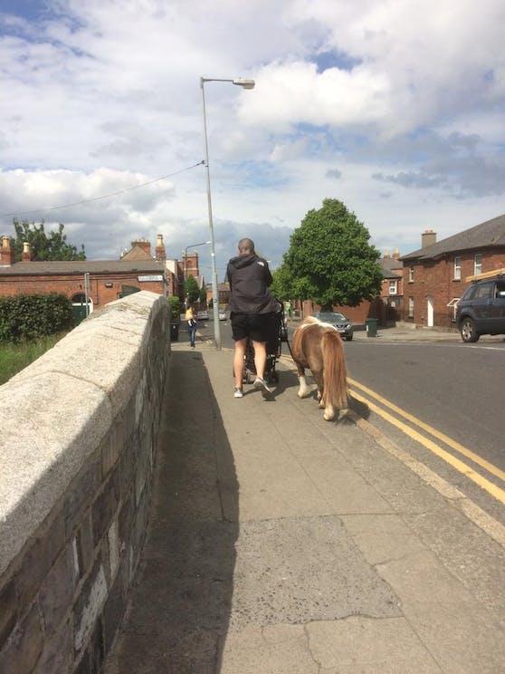 Mann spaziert mit Handy, Kind und Pony in Dublin