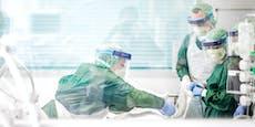 Kuh-Urin & Co – Tausende Tote durch Corona Fake News