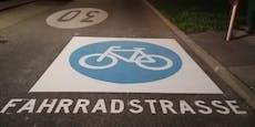 Diese Fahrradstraße ist sicher nicht zu übersehen