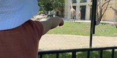 Riskanter Zoo-Besuch: Hier halten nur die Tiere Abstand