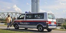 Maskierte umstellen und prügeln Opfer auf Donauinsel