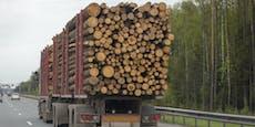 Frisch gestapeltes Holz von Dieben wegtransportiert