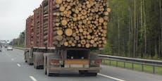 FPÖ fordert sofortigen Importstopp von Billigholz