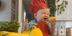1-jähriger Koch begeistert 1,5 Millionen Instagram-Fans