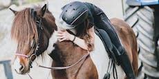 """""""Adelige"""" versuchte Pferd aus Reitstall zu stehlen"""