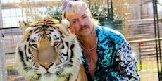 """""""Tiger King"""" – Behörden beschlagnahmen 68 Löwen & Tiger"""
