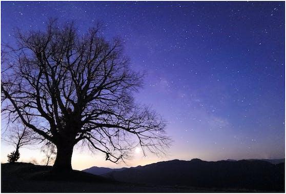 Wunderschöne Aufnahmen selbst bei Dunkelheit: Das leistungsstarke Leica Kamerasystem der Huawei P40-Serie macht es möglich.