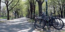 Betrunkener Fahrrad-Dieb von Polizei erwischt