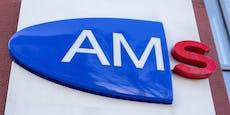 73.000 Überstunden: Bald Streiks beim AMS?