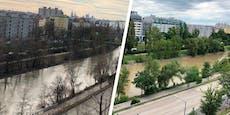 Grausige Farbe – was ist mit dem Donaukanal los?