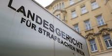 Überfälle in Wien – Pink-Panther-Mitglied verurteilt