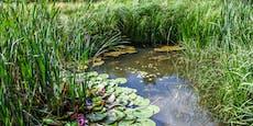 Sturz in Teich: Kind fast zehn Minuten unter Wasser