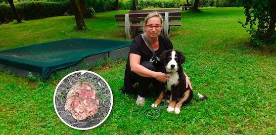 Hundebesitzerin Iris Fries mit ihrem Bruno