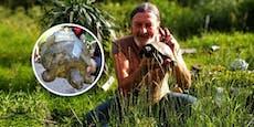 Kurt (62) gehört die Peilsender-Schildkröte