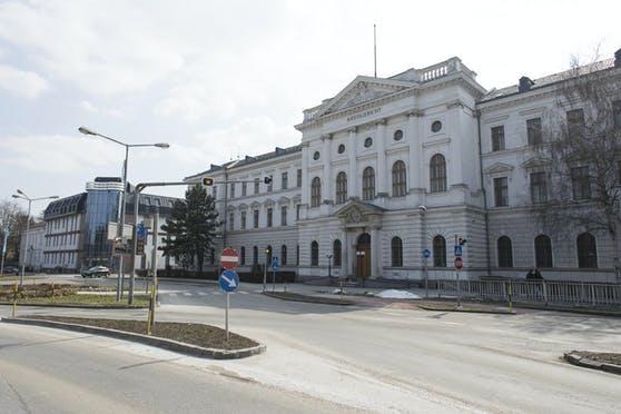 Die Staatsanwaltschaft Wr. Neustadt leitet das Ermittlungsverfahren.