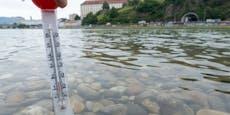 Bibberalarm in den heimischen Gewässer