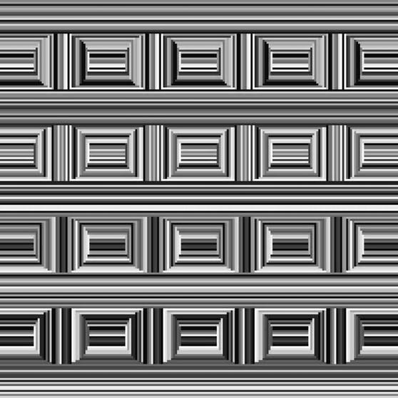 In diesem Bild sind 16 Kreise versteckt. Kannst du sie sehen?