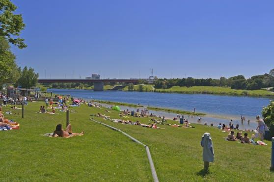 Auf der Donauinsel spielte sich am Sonntag ein familiäres Drama ab.
