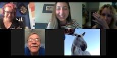 Esel-Dame platzt für Geld in jede Videokonferenz