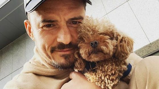 "Orlando Bloom mit Hund ""Mighty"""