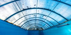 Mühlviertler (42) baut sich Hanfplantage im Pool