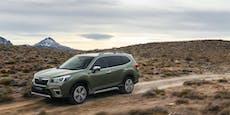 Subaru Forester: Der erste e-Boxer im Test