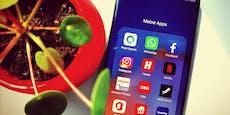 HuaweiPetal Search ist die neue Suchfunktion für Apps