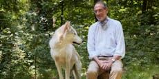 Bildungsminister Faßmann ist auf den Wolf gekommen