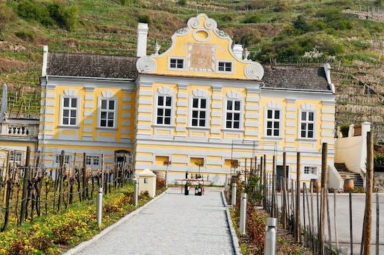 Die Domäne Wachau ist das beste Weingut Europas.
