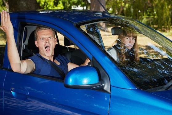 Während manche Beifahrer richtig hilfreich sind, würde man andere lieber an der Straße aussetzen.